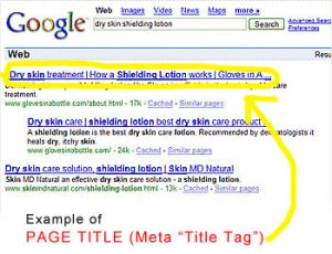 Why do you Need Great Blog Post Meta Title Tags